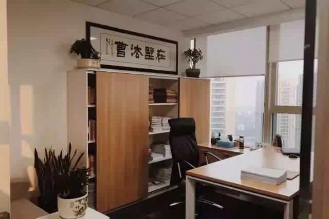 泽大简介-越律网