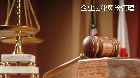 企业法律风险管理指南