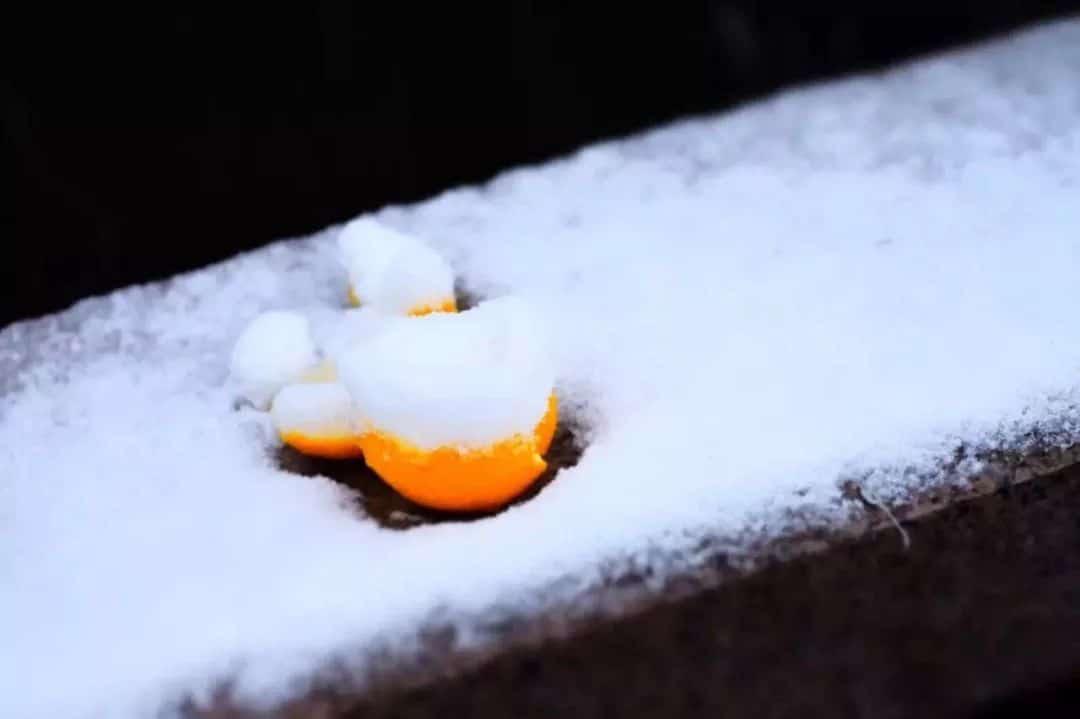 以2018年的最后一场雪致敬2019
