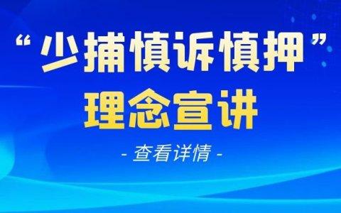 """最高检苗生明解读""""少捕慎诉慎押""""刑事司法政策"""